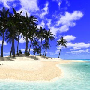 shakespeare quiz beachy